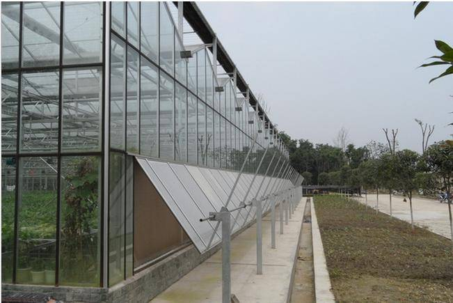 China Supplier Multi-Span Glass Greenhouse for Hot Sale