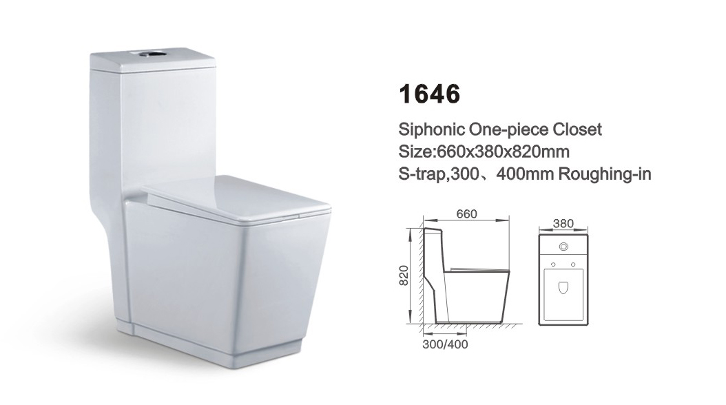 Item NO.1646A washdown one-piece toilet