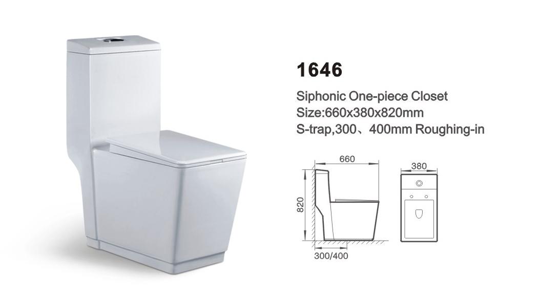 Item NO.1646A washdown one-piece toilet