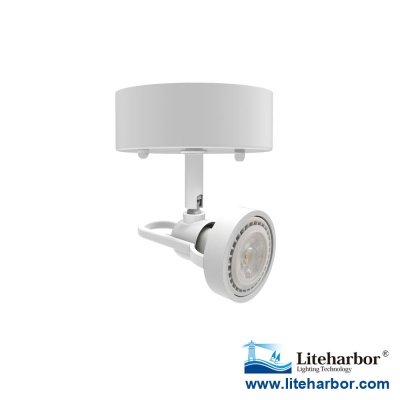 LED Ceiling Mounted Track Light From Liteharbor