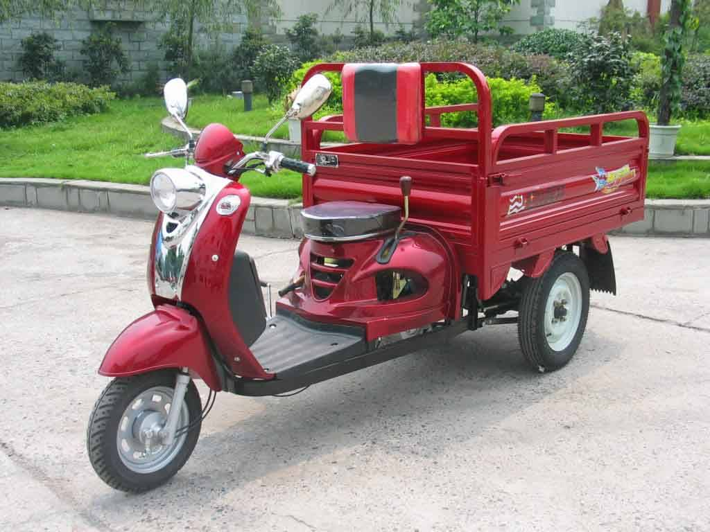 Tricycle:BS110ZH-3