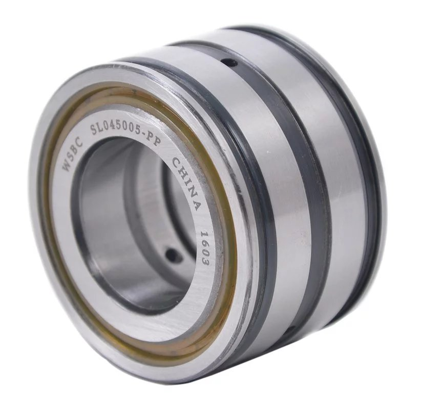Sealed double row full complement cylindrical roller bearings SL04 5004 PP