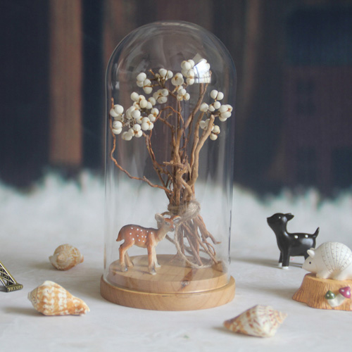 Mini Glass Cloche With Wood Base D10xH12cm