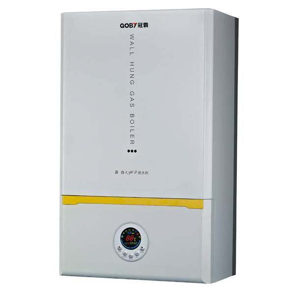 LPG NG Wall Hung Gas Boiler for Home