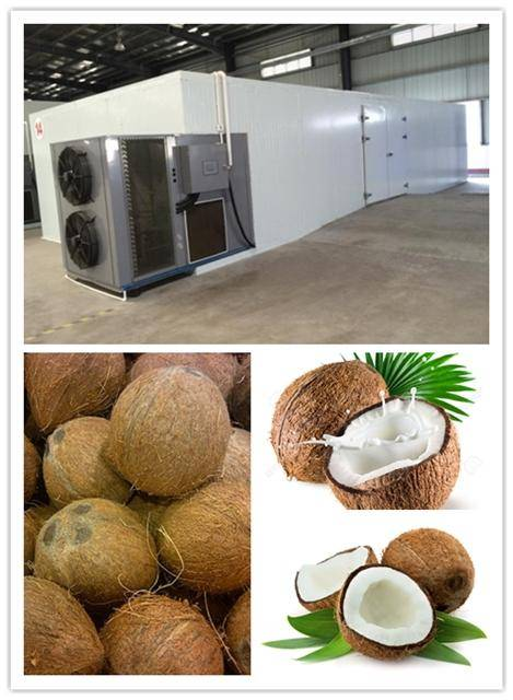 Automatic intellligent control industrial desiccated coconut dryer machine, hot sale,energy saving d