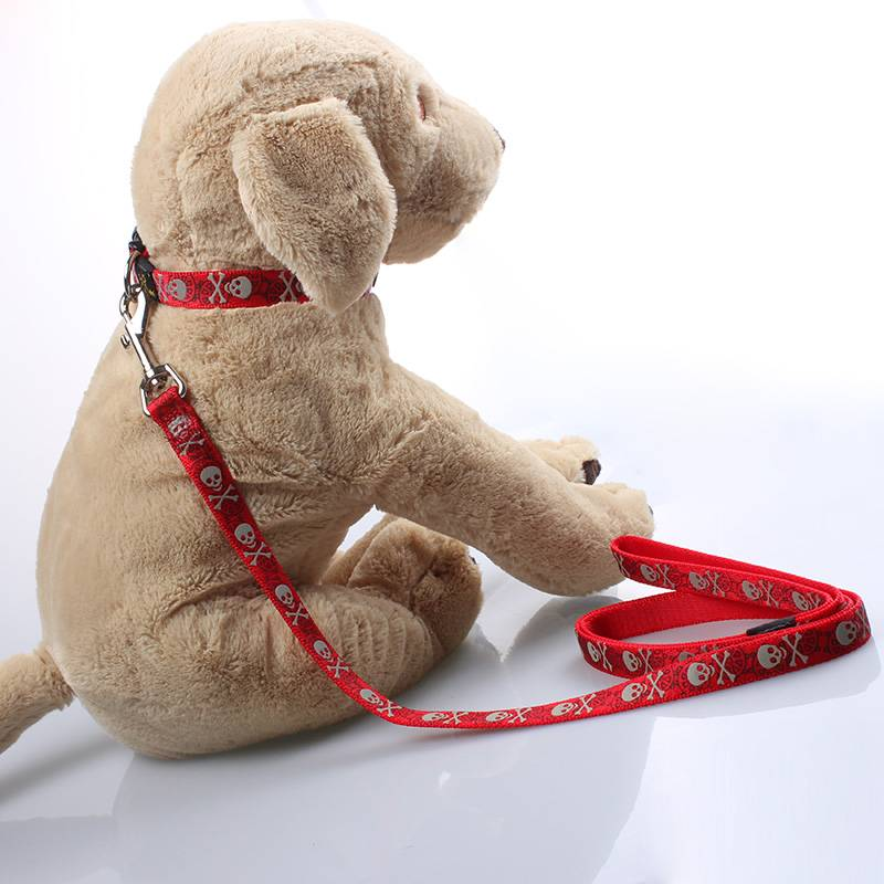 Manufacturer personalized wholesale nylon dog collar and leash