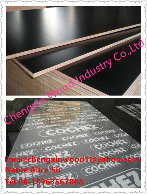 Black Film Faced Plywood with Poplar Core, AA Grade, Melamine Glue