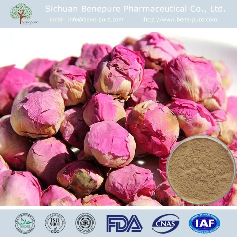 Natural Paeonia Lactiflora Extract CAS 23180-57-6 Paeoniflorin 98%,BENEPURE