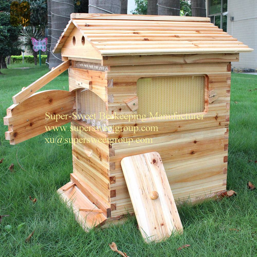 Manufactory supply beehive with plastic honey bee hive flow frame