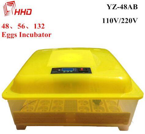 31 $ automatic mini 48 poultry egg incubator  YZ8-48AB
