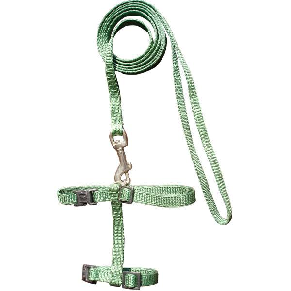 American Style Pet Leash & Harness