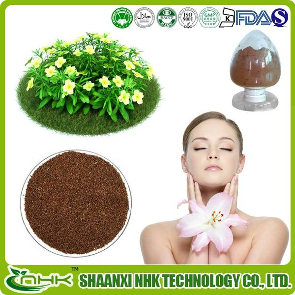 Factory price 100% Natural and Pure Evening Primrose Extract Powder