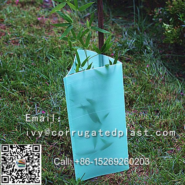 plastic tree guard, corflute tree guard ,PP hollow sheet