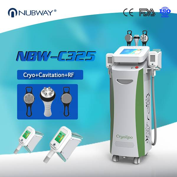 2016 New Cryolipolysis Cool Body Sculpting Machine With CE