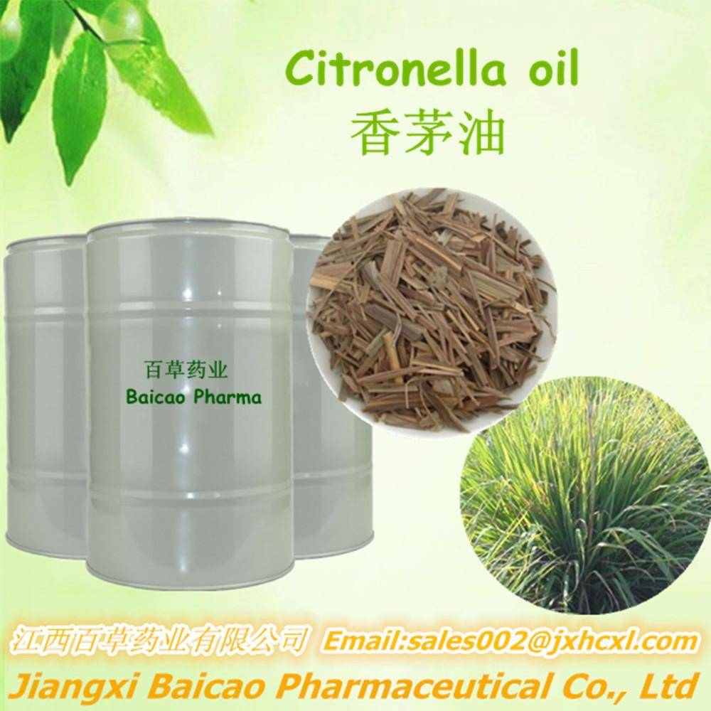 Pure Citronella Oil Bulk Quantity for Exporting