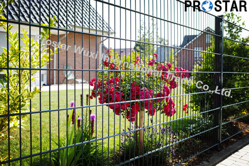 6/5/6 Double Wire Welded Fence Panels with SGS Certificated
