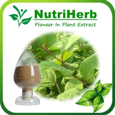 Natural Anti-aging 98% Resveratrol