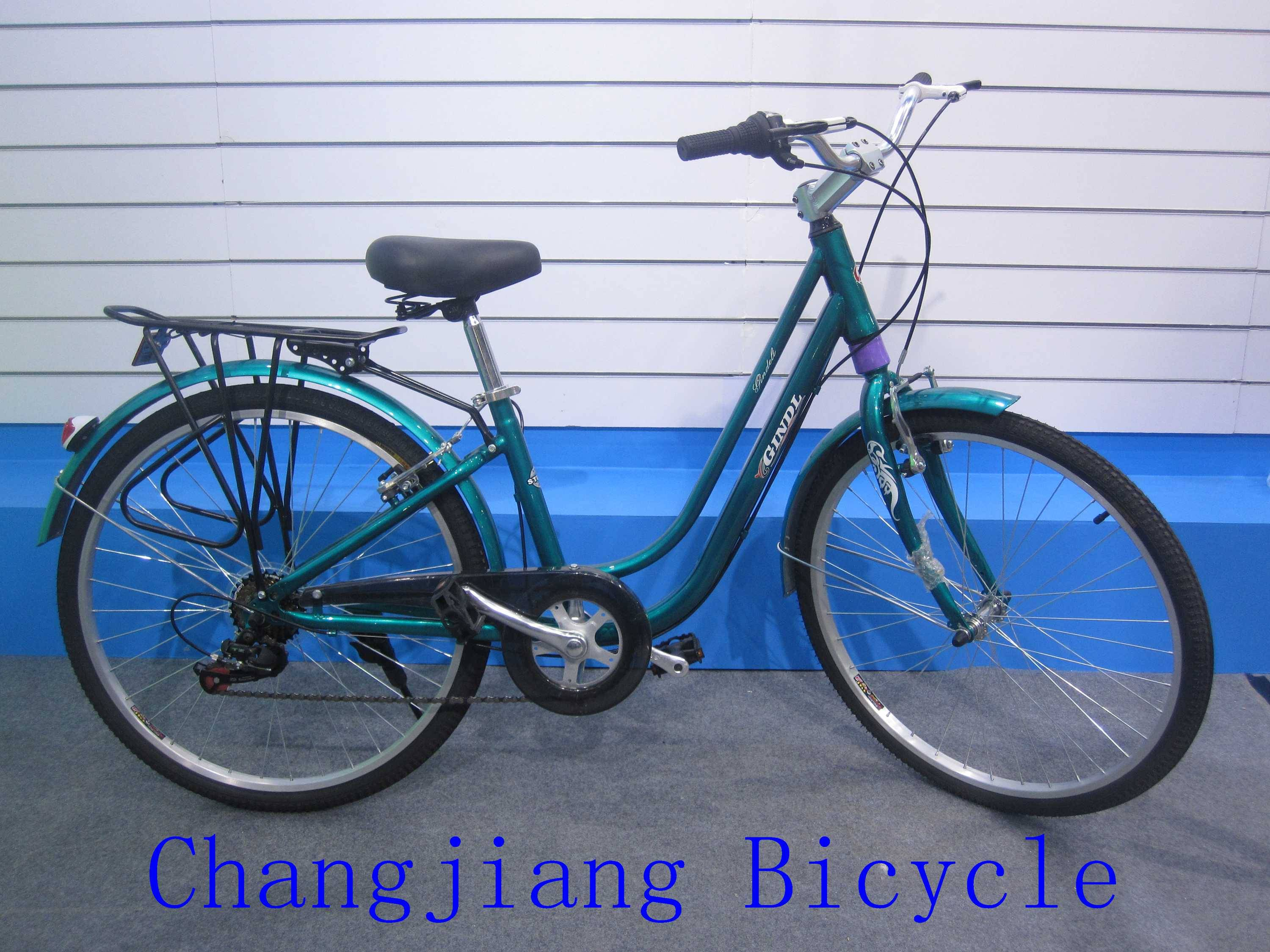 europe market road bike for both woman and man