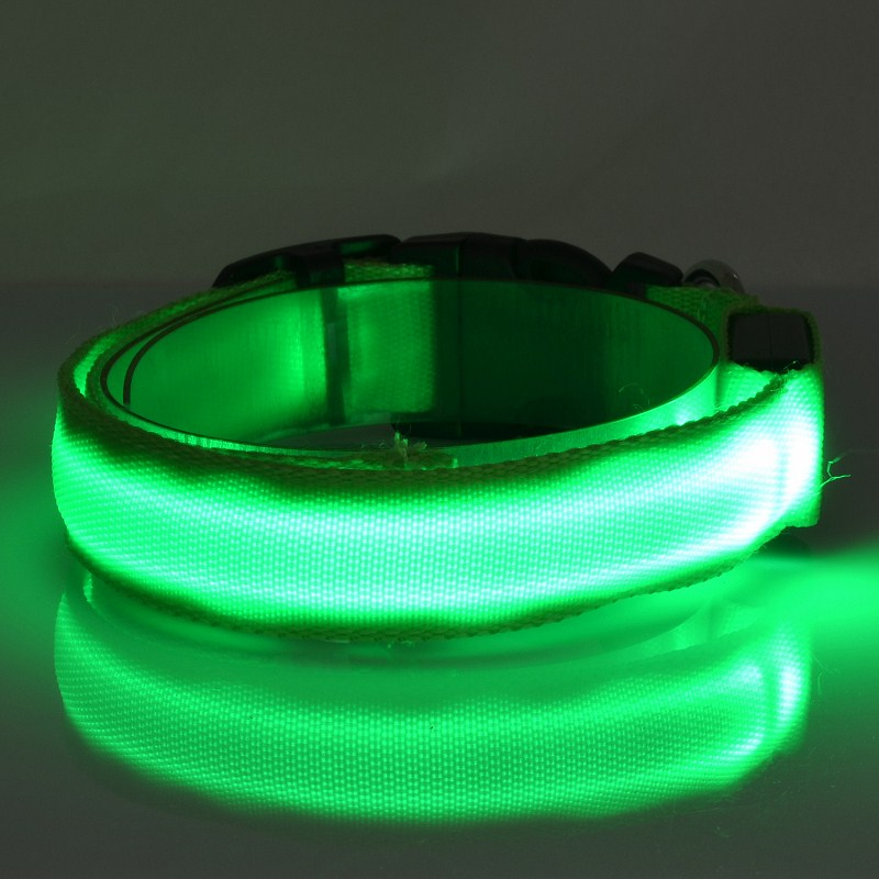 LED light up dog collar factory supply for pet products