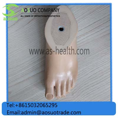 Sach FootOrthopedic Implant Prosthetic Sach Foot