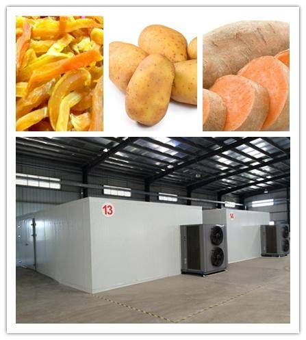 Hot sales! potato dryer and potato chip drying machine/sweet potato dehydrator equipment/agriculture