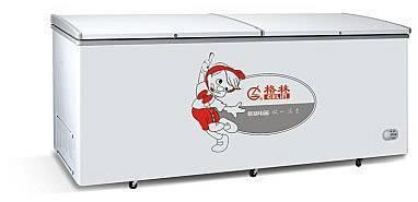 Double opeing door freezer/refrigerator