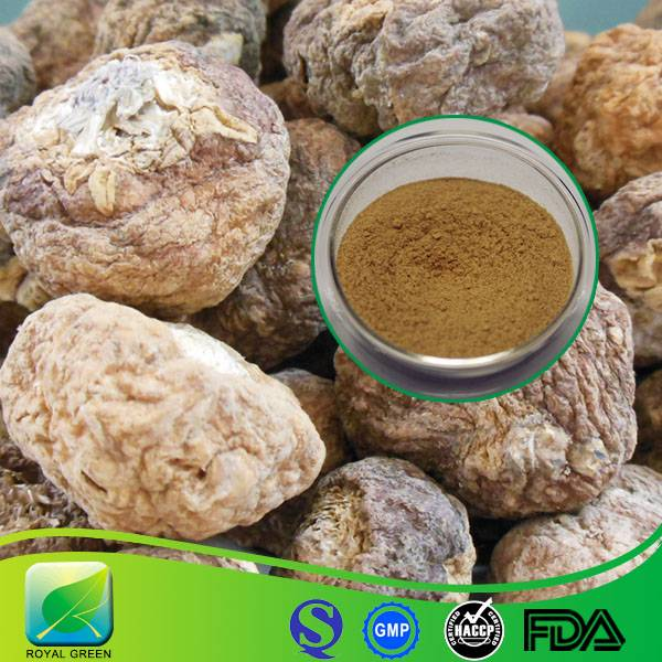 Factory Supply 100% Pure Natural Maca Extract Powder for Enhancing Sexual Function