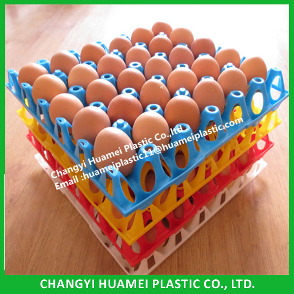 Wholesale Plastic Egg Tray Can Hold 30 Eggs for Transport