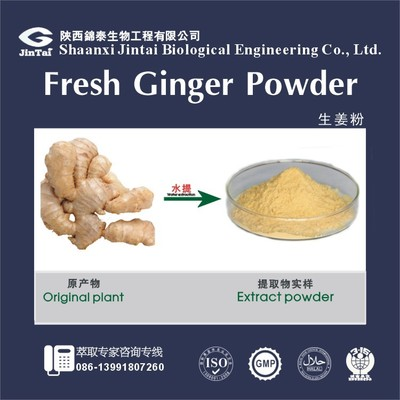 100% water soluble natural ginger juice powder