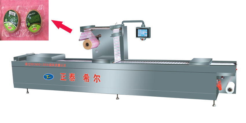 DZR520 Automatic Stretch Film Vacuum Packing Machine