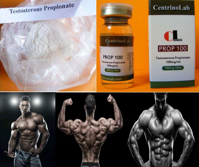 99.0%High Purity Testosterone Propionate raw powder PROP 100 for bodybuilding