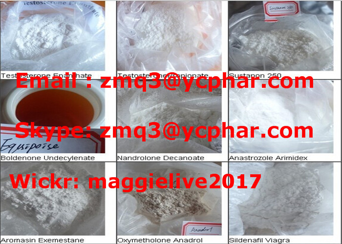 Lean Muscle Anabolic Raw Steroid Hormone Powder Primobolan Methenolone Acetate