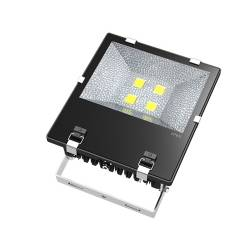 Fin-Style 100w LED Flood Light CE & RoHS certified,5 years warranty