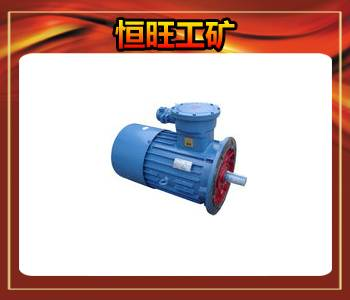 DSB series conveyor with explosion proof three-phase asynchronous motor