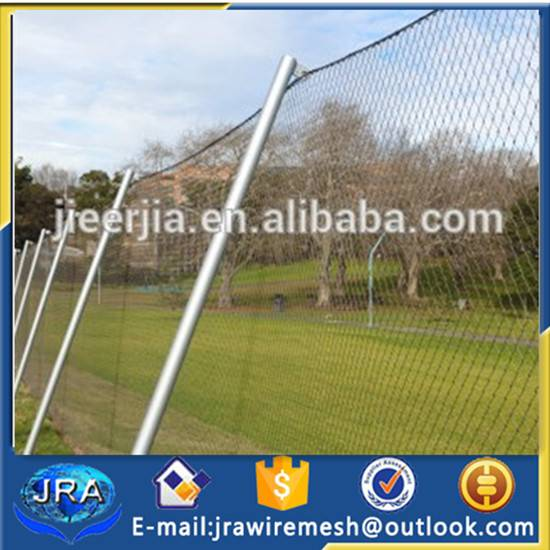15 years factory Stainless steel park fence