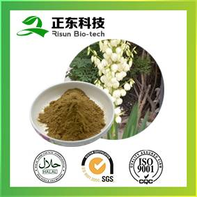 High quality with competitive price 10% saponin UV Yucca Extract