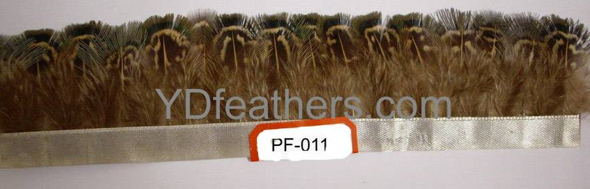 feather trimming-011