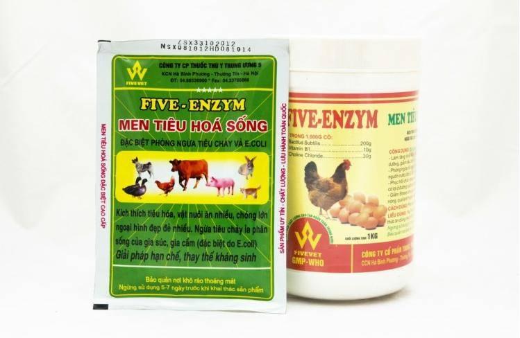 Five-Enzym