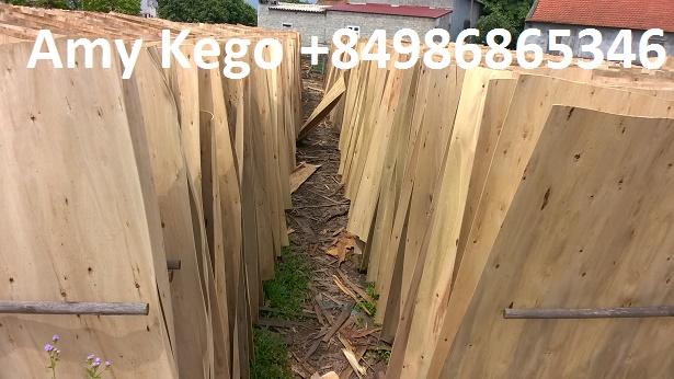 1.7mm Eucalyptus Core Veneer for Plywood Making
