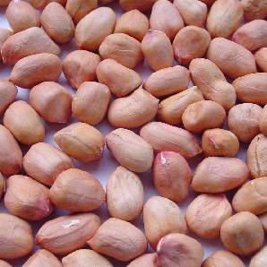 Chinese raw peanuts