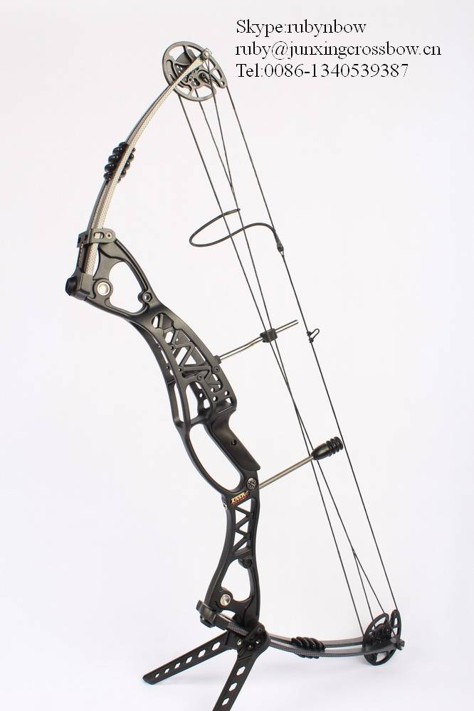 Both hand use compound bow