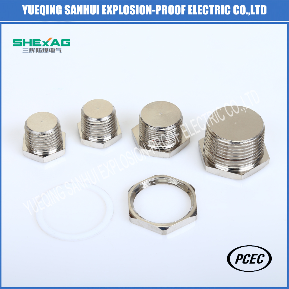 Explosion-proof Hexagon brass stopper plug