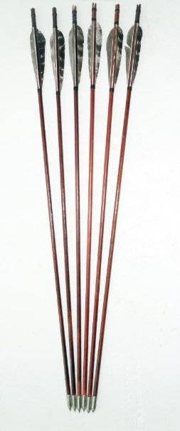 Generic Gorgeous Gand-Painted Wooden Arrows Eaglecrest Turkeys Color Red Pack of 6
