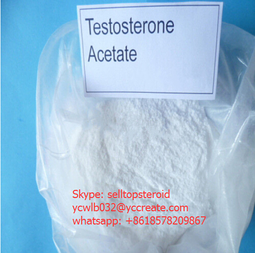 Testosterone Raw Steroid Powder Testosterone Acetate