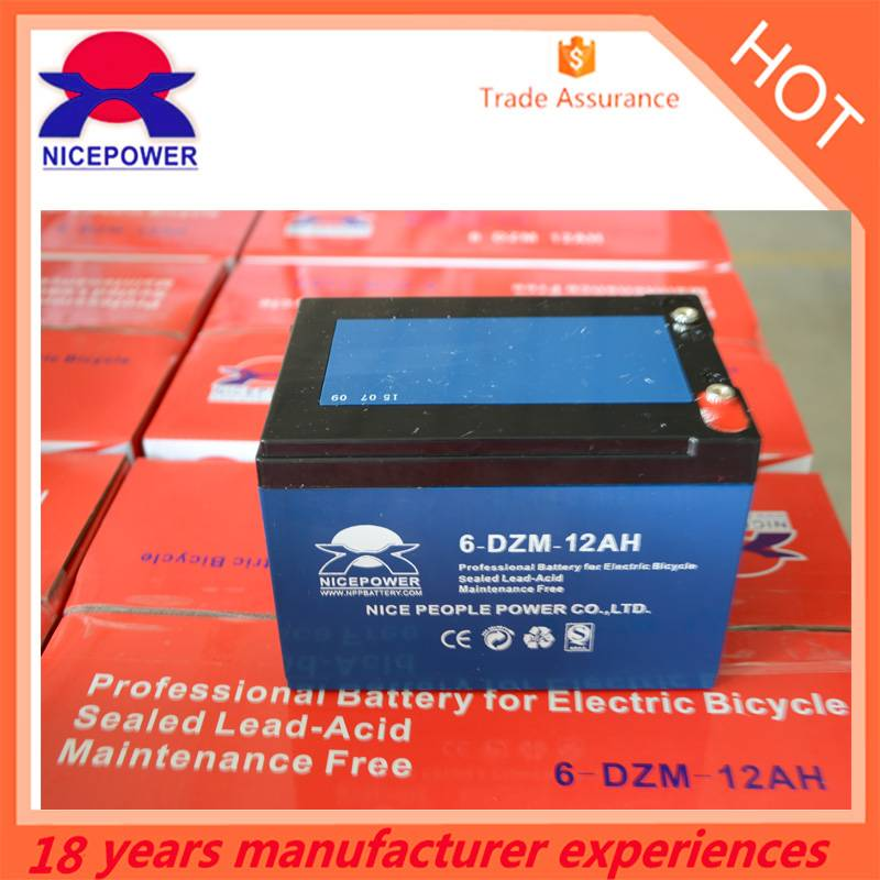 electric bike battery 6-DZM-12 12v 24v 36v 48v 20ah e-bike battery pack from China supplier