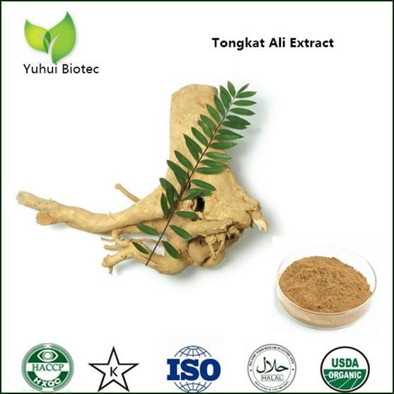 tongkat ali extract,tongkat ali root extract 200:1,tongkat ali extract powder,tongkat ali powder,ton