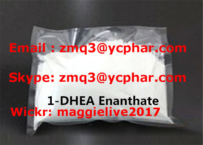 1-DHEA / 1-Androsterone Muscle Building Steroids for Bodybuilding CAS 76822-24-7