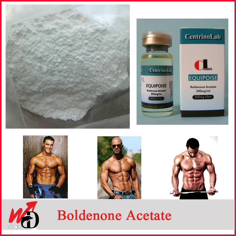 USP Raw Powder 2363-59-9 Boldenone Acetate for Bodybuilding