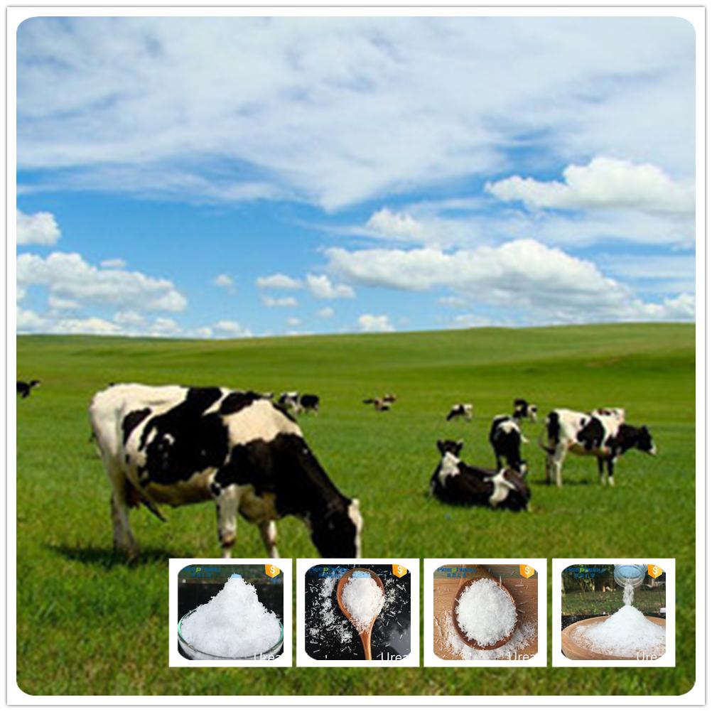 Animal feed urea