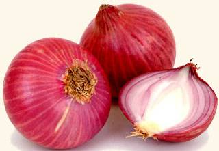 WE CAN SUPPLY FRESH RED ONIONS